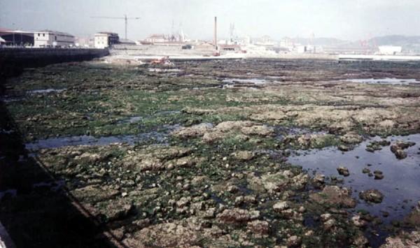 playa poniente (1994)