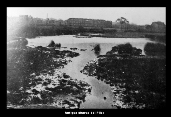 Antigua charca del Piles
