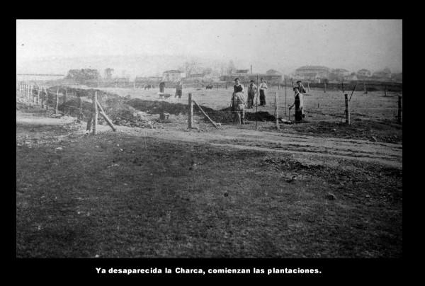 Desaparecida charca-Plantaciones